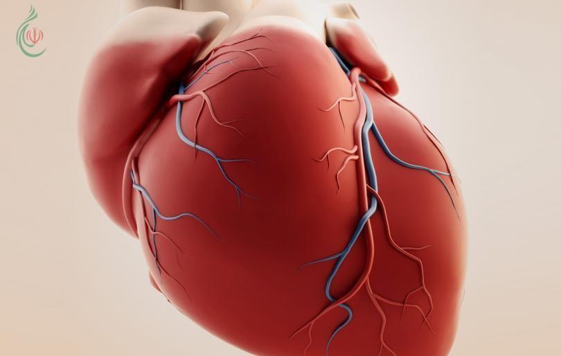 7 مقاييس صحية تقي من خطر الإصابة بأمراض القلب