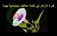 الأزهار لغة الجمال والمحبة والسلام