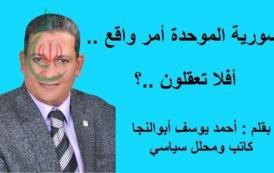 سورية الموحدة أمر واقع .. أفلا تعقلون ..؟ بقلم : أحمد يوسف أبوالنجا كاتب ومحلل سياسي