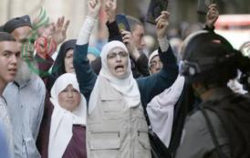فلسطين .. وحدة الهدف المشترك والتاريخ والدم الواحد .. بقلم : سري القدوة