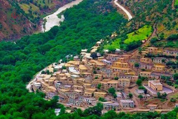 فرهاد عزيزي : إيران في المرتبة العاشرة عالميا من حيث تسجيل الآثار التاريخية