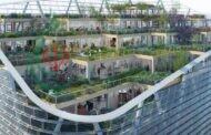 تحدٍّ معماري كبير في سيدني .. بناء برج خشبي مكون من 40 طابقاً