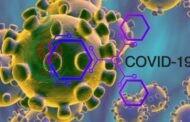 كورونا ..الفيروس يعود لاصابة المتعافين منه
