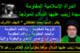 المرأة الإسلامية المقاومة .. السيدة زينب عليها السلام