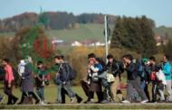 ألمانيا تسمح للاجئي سورية باستقدام كل أفراد أسرتهم حتى ولو بلغوا 100 شخص