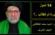 14 تموز .. ثورة أم إنقلاب ..؟ .. بقلم : السيد محمد الطالقاني